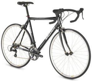 raleigh-2009-road-bike
