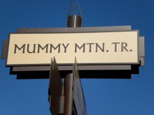 Fun Street Names