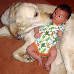 Friday Funny baby and dog
