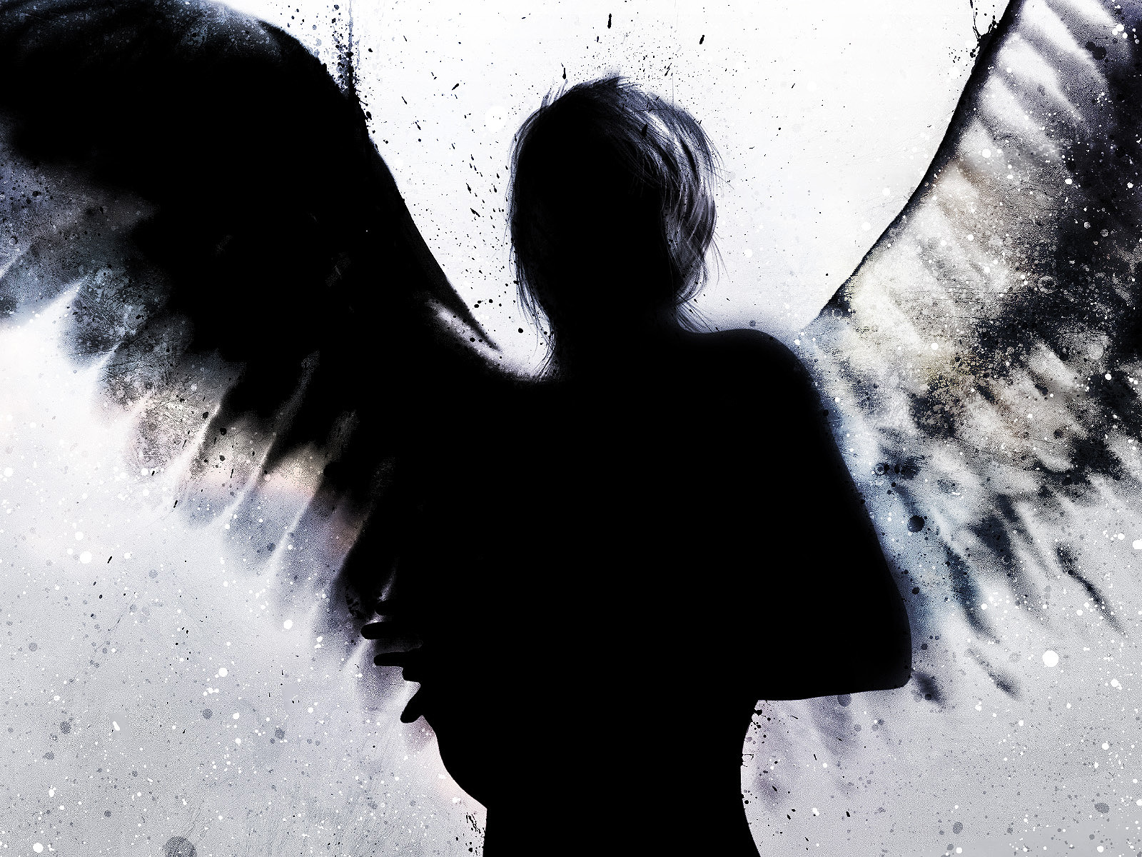 Well  mostly the wings  There   s just something about wings  What is    Fallen Angels Wings